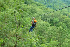 zipline adventure park raleigh